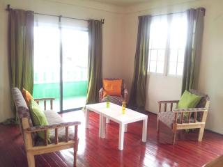 Bright 3 bedroom Georgetown House with Internet Access - Georgetown vacation rentals