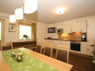 Perfect Condo with Sauna and Ping Pong Table - Schladming vacation rentals