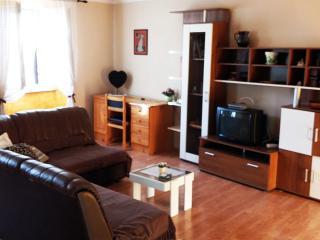 Nice 1 bedroom Condo in Pazin with Wireless Internet - Pazin vacation rentals