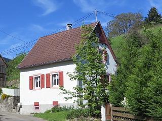 Gemütliches Ferienhaus am Rand der Vogesen - Soultzeren vacation rentals