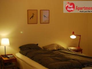Bright Spacious And Relaxing Apartment Near Beach And Par - 6825 - Malmö vacation rentals