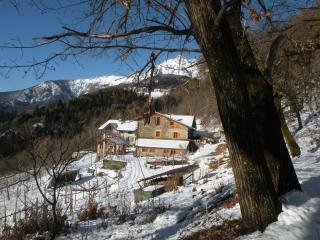 appartamento 5 posti in antico maso - Caldonazzo vacation rentals