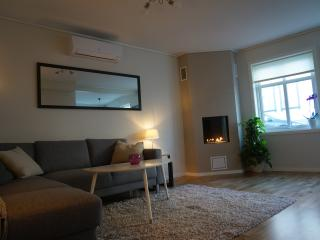Apartment close to city centre. - Stavanger vacation rentals