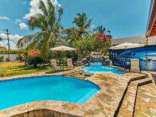 Gorgeous Private Villa with Jacuzzi and Pool - Boca Chica vacation rentals