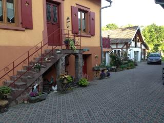 Nice House with Internet Access and Washing Machine - Selestat vacation rentals