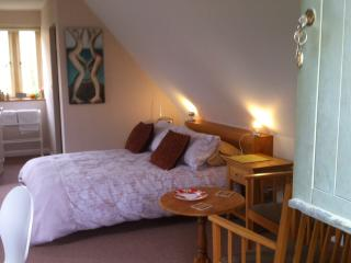 Elder Mews large independent studio near Burford - Burford vacation rentals