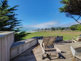 Oceanfront home with hot tub, deck, shared pool access, & dog-friendly too! - Sea Ranch vacation rentals