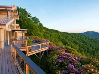 Long Range Views In SW VA  off Blue Ridge Parkway - Meadows of Dan vacation rentals