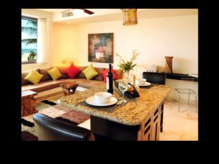Perfect 4 bedroom Playa del Secreto Villa with Internet Access - Playa del Secreto vacation rentals