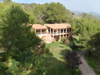 Finca Calmosa – Quietly located finca for 8 persons in Puert Andratx - Andratx vacation rentals