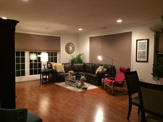 Gorgeous Spacious Luxury Condo - 1 Bedroom Avail - Philadelphia vacation rentals