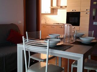 Viareggio BELL'APPART+Balcone+parking - Viareggio vacation rentals