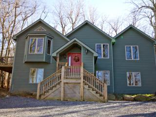 Spacious House with Internet Access and Dishwasher - Wintergreen vacation rentals