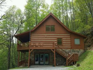 Secluded Cabin -  Dog Friendly! - Townsend vacation rentals