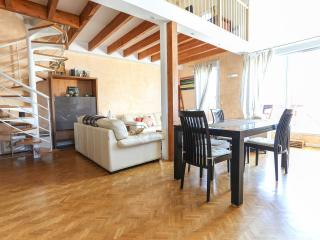 Luxurious 3 bedroomed Near Disneyland Paris - Chessy vacation rentals