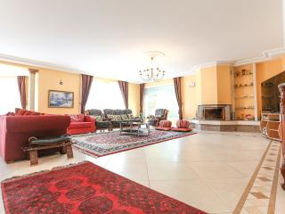Spacious Villa Nr Disneyland Paris sleeps 12/14 - Chessy vacation rentals