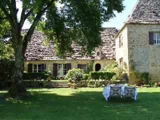 Stunning, historical Manoir ideally located - Lascaux vacation rentals
