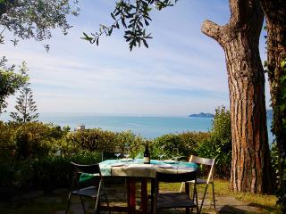 MUSA 4BR-garden&pool&terrace by KlabHouse - Rapallo vacation rentals