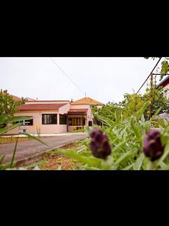 Bright 2 bedroom Zadar House with Internet Access - Zadar vacation rentals
