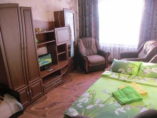 Cozy Condo with Elevator Access and Central Heating - Belarussia vacation rentals