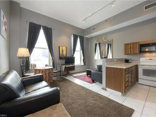 Downtown! Walk to Indians Post-Season Games! View! - Cleveland vacation rentals