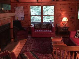 Nice 3 bedroom Cabin in Sherman - Sherman vacation rentals