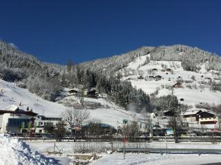 Apartment Areit Holidays - Zell am See vacation rentals