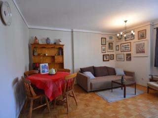 Nice 1 bedroom Condo in Zell am See with Internet Access - Zell am See vacation rentals