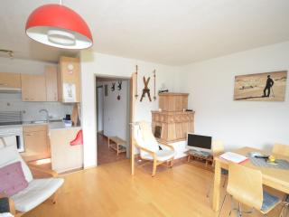 Sunny Apartment with Television and Microwave - Zell am See vacation rentals