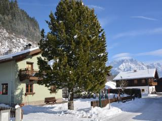 Gorgeous 5 bedroom Chalet in Zell am See - Zell am See vacation rentals