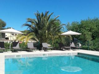 Nice Studio with Internet Access and Garden - Tourrettes-sur-Loup vacation rentals