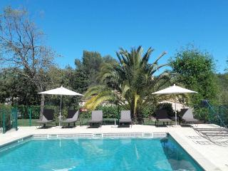 1 bedroom Condo with Internet Access in Tourrettes-sur-Loup - Tourrettes-sur-Loup vacation rentals