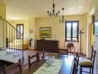 TICINO PARK close to Malpensa-30 min from Milan - Robecchetto con Induno vacation rentals