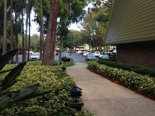 Spacious Modern First Floor Unit With Patio - Clearwater vacation rentals
