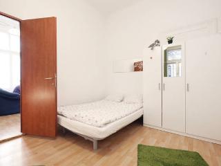Big sinagouge central flat - Budapest vacation rentals