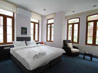 Studio Apartment in the Hearth of Taksim - Istanbul vacation rentals