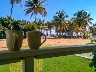 Bosque Del Mar, Beach Front, Ground Floor - Rio Grande vacation rentals