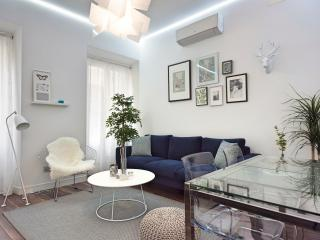 Exclusive 110m apart 3 rooms 2 bathrooms - Madrid vacation rentals