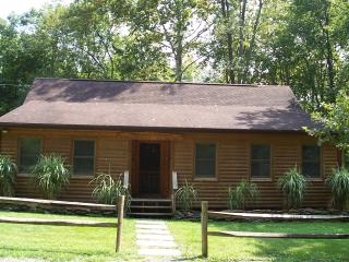 Shenandoah Dreaming Riverfront Log Cabin - Luray vacation rentals
