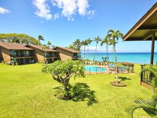 Perfect Condo with Internet Access and Television - Lahaina vacation rentals