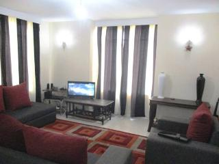 Bright 3 bedroom Nairobi Region Condo with Washing Machine - Nairobi Region vacation rentals