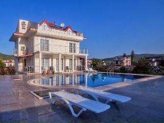 villa sun shine - Fethiye vacation rentals