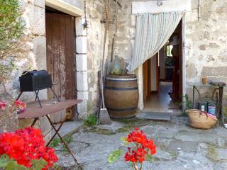 Maison de pierre au calme des berges de rivière - Laviolle vacation rentals