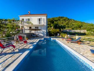 Villa Natura with pool in Dubrovnik - Dubrovnik vacation rentals