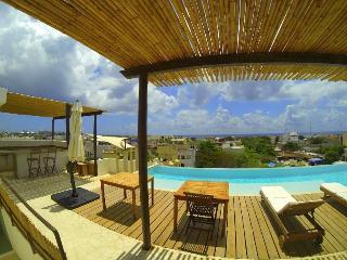 Bluewater Penthouse Condo Playa del Carmen - Playa del Carmen vacation rentals