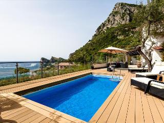 NE145- Beautiful Villa! swimming pool, BBQ & Sea view! - Nerano vacation rentals