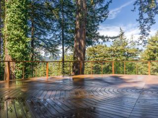 Quiet Luxury & Romance in the Redwoods with Spa - Santa Cruz vacation rentals
