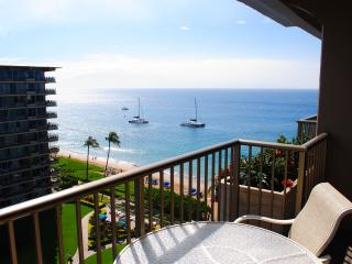 Gorgeous Newly Remodeled Ocean View Studio - Kaanapali vacation rentals