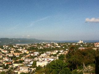 Beautiful House with Internet Access and Washing Machine - Montego Bay vacation rentals