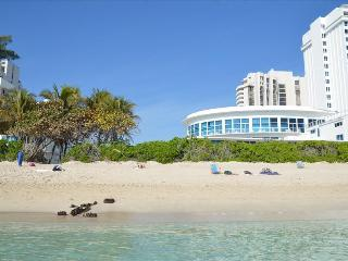Luxury Oceanfront Duplex Condo Sleeps 7 - Miami Beach vacation rentals